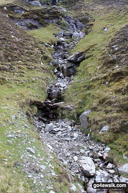 Gully on the lower slopes of Ben Hope