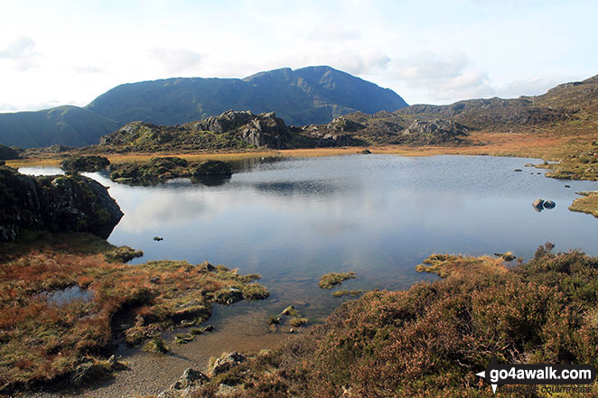 Innominate Tarn with Great Gable beyond