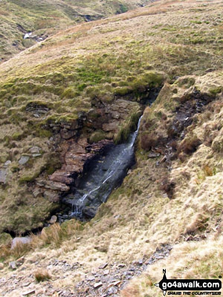 One of the many streams that flow into Stone Beck on the lower slopes of Great Whernside