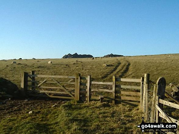 Carn Edward in the Preseli Hills on the approach to Carn Ingli