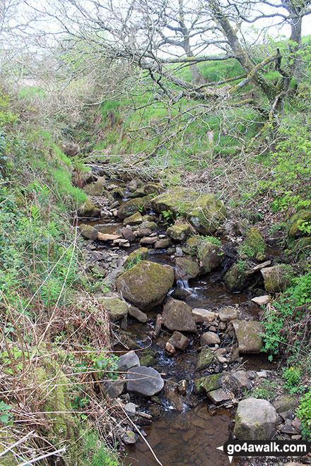 Stream near Rowarth