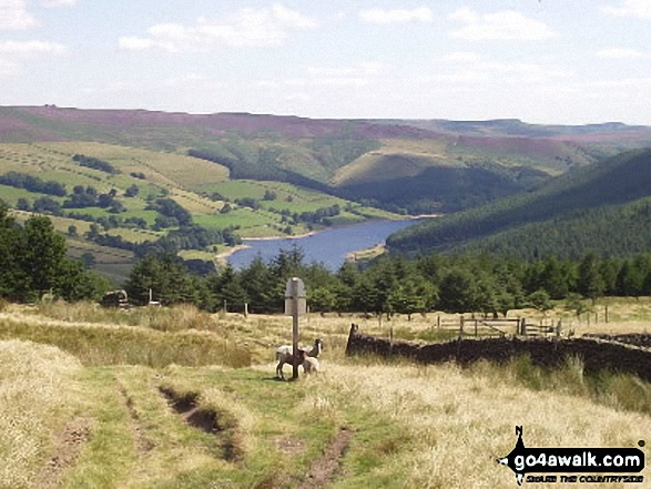 Ladybower Reservoir from nr Alport Castles