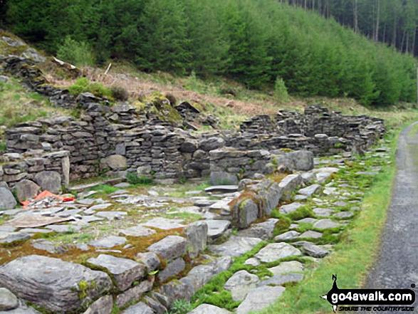 Tai Penamnen near Dolwyddelan