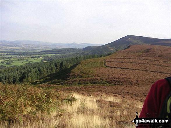 Moors Hill & Wood - on an alternative coast to coast walk