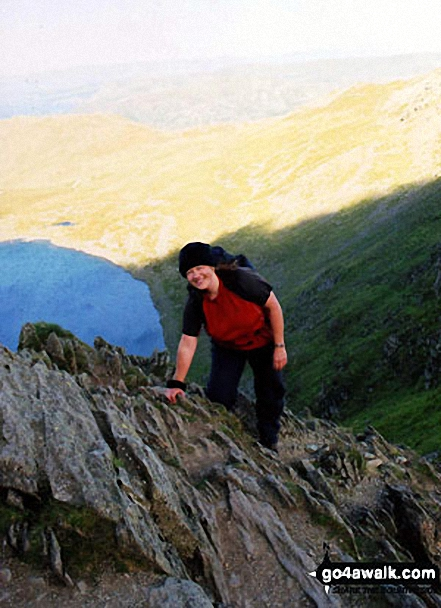 Walk c264 The Grisedale Round from Patterdale - This is me scrambling to the summit of Helvellyn after surviving Striding Edge!
