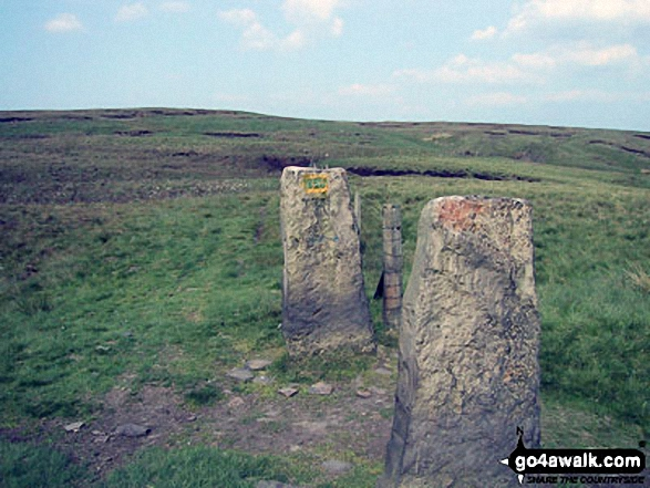 Pair of lone gate posts on Hail Storm Hill