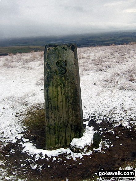 Boundary Stone on Brown Wardle Hill