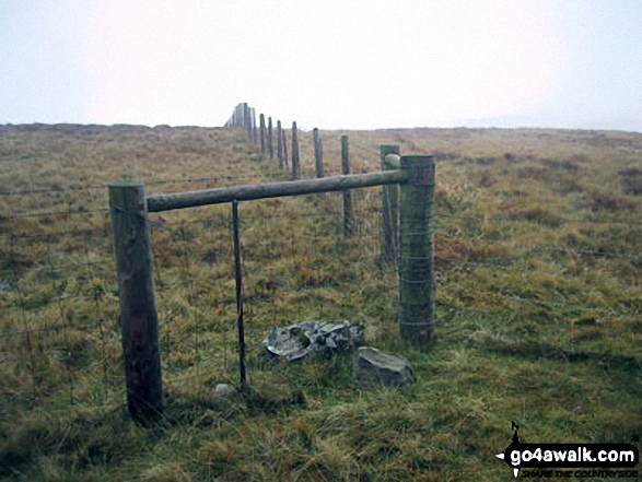 The fence junction marking the summit of Great Yarlside