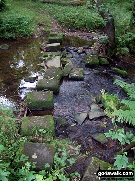 Stepping Stones over Swinden Water