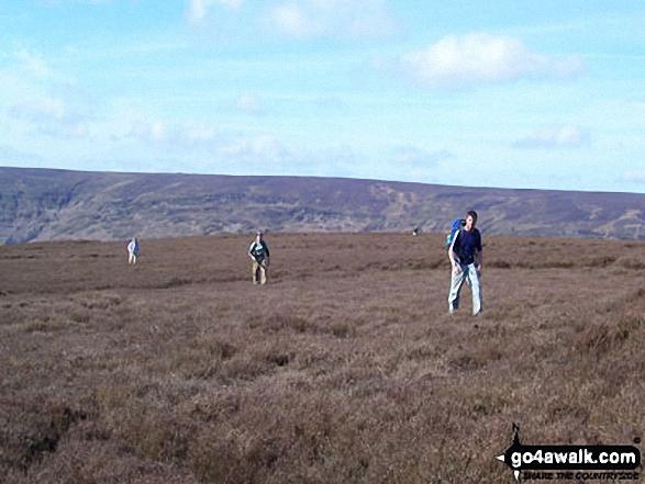 On Farndale Moor