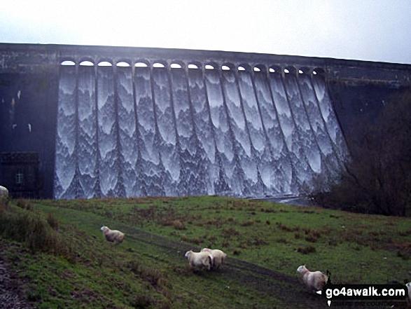 Cray Reservoir dam