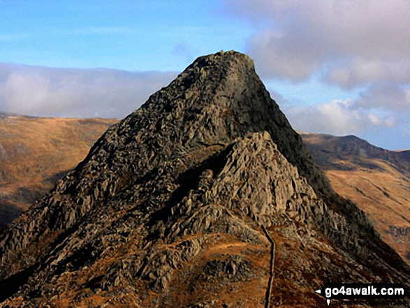 Walk Picture/View: The south ridge of Tryfan from the top of Bristly Ridge, Glyder Fach in Snowdonia, Gwynedd, Wales by Paul Johnson (22)