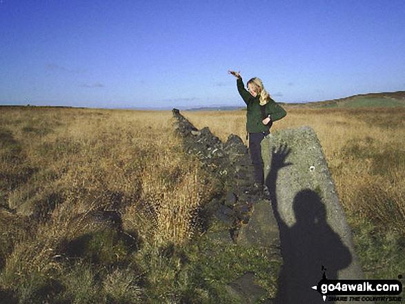Cheery wave on Extwistle Moor