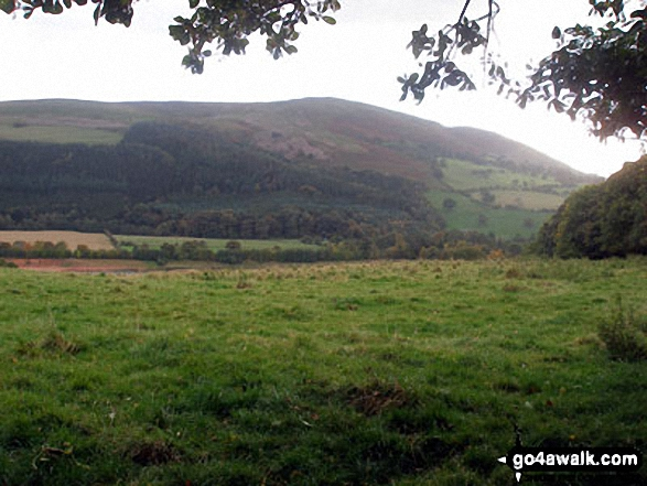 Moel y Parc from near Maes-mynan Hall
