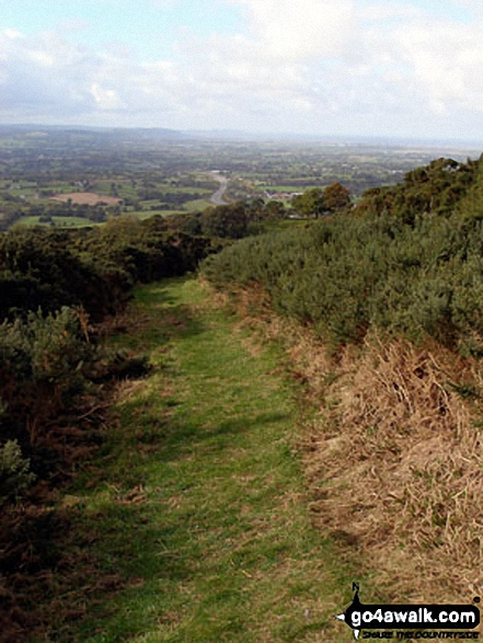 The Offa's Dyke Path on Moel Maenefa
