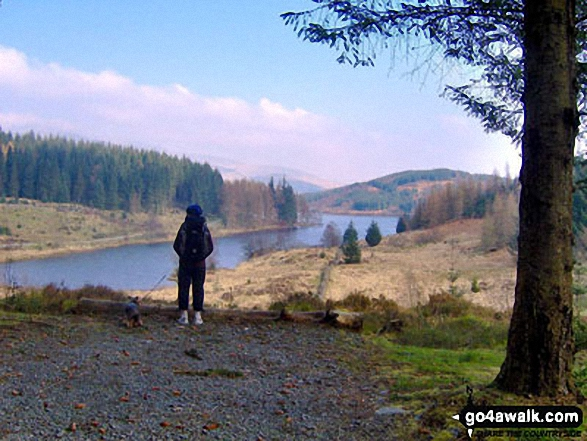 Walk Picture/View: Loch Drunkie in Loch Lomond and The Trossachs to Loch Tay, Loch Lomond and The Trossachs, Stirlingshire, Scotland by Peter Kemp (7)