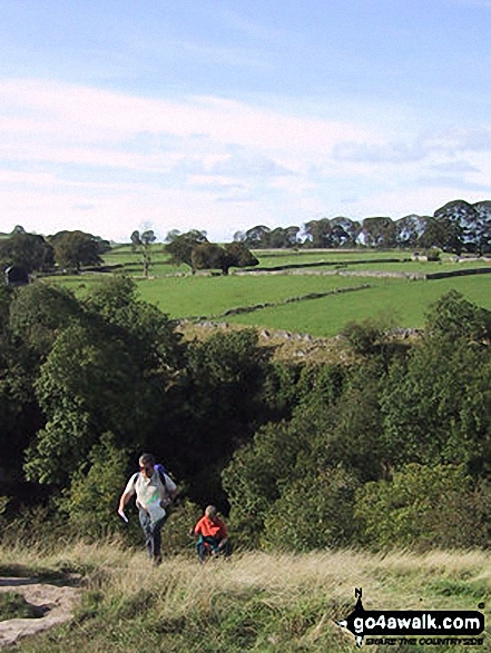 Climbing out of Cales Dale. Walk route map d152 Monyash, Youlgreave, Bradford Dale, Middleton-by-Youlgreave and Kenslow Knoll from Hurdlow (Sparklow) photo