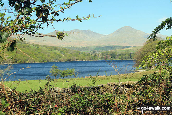 White Maiden, Walna Scar, Dow Crag and The Old Man of Coniston across Coniston Water from Crab Haws Woods