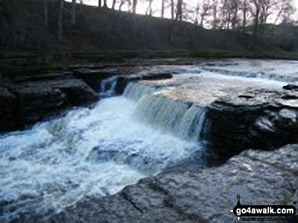 Aysgarth Falls - Low Force