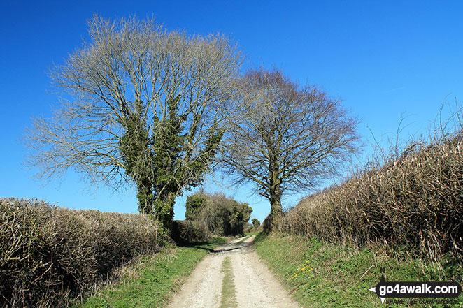 Fawley Lane (Track) on Fawley Down