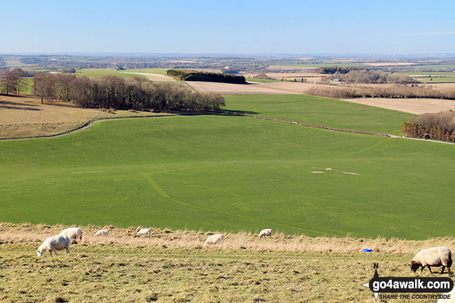 The view from Cheesefoot Head (Matterley Bowl)