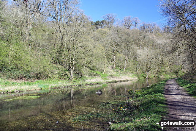 The River Bradford in Bradford Dale, Youlgreave