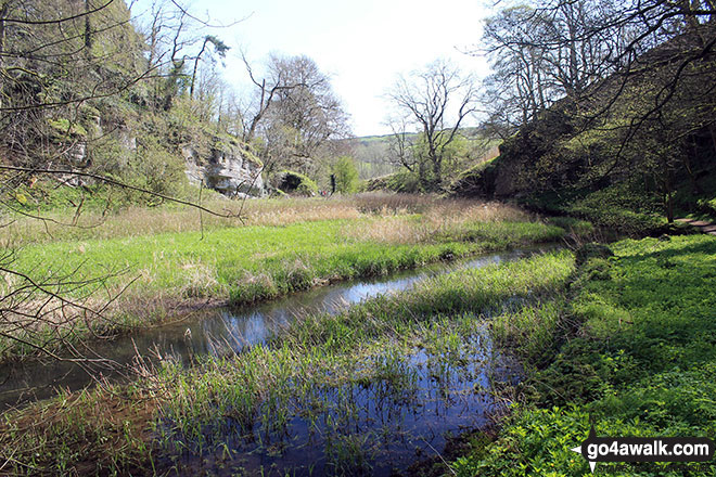 The River Bradford at the Middleton-by-Youlgreave end of Bradford Dale
