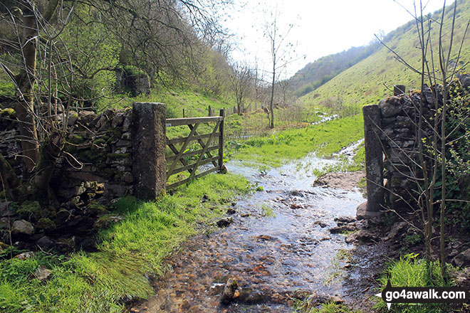 Gate and overflowing stream in Gratton Dale