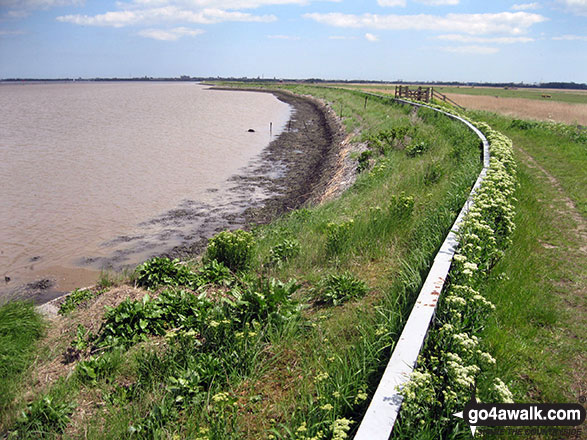 The path beside Breydon Water
