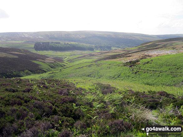 Goyt's Clough from Goyt's Moss
