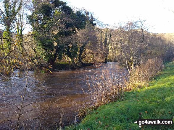 The River Wye in Monsal Dale