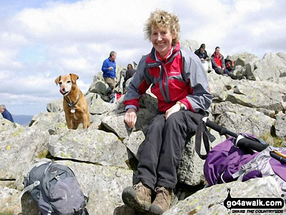 Me and my dog, Rosie at the top of Great Gable. Walk route map c141 Great Gable and Pillar from Wasdale Head, Wast Water photo