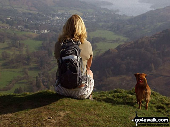 Looking down to Ambleside from Nab Scar with Rosie dog The final stage of Fairfield horseshoe
