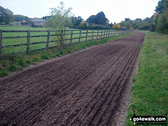Russell Farm Horse Gallop Track near Cobblershill Lane, Wendover Dean