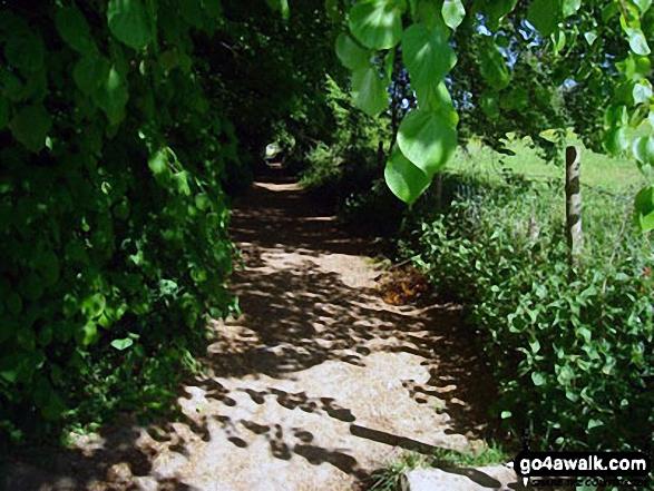 Footpath near Shardeloes Lake