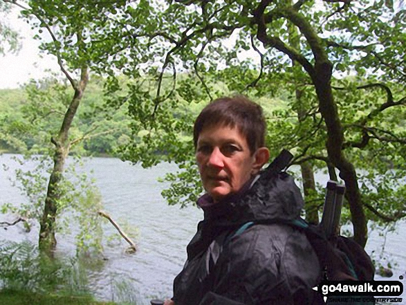 Elly beside Llyn Cynwych Llyn Cynwych was over 5 foot above normal level for this time of year, i.e. June, 2012!!