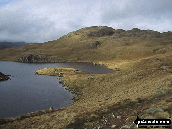 Angletarn Pikes from Angle Tarn. Walk route map c416 Scafell Pike from The Old Dungeon Ghyll, Great Langdale photo