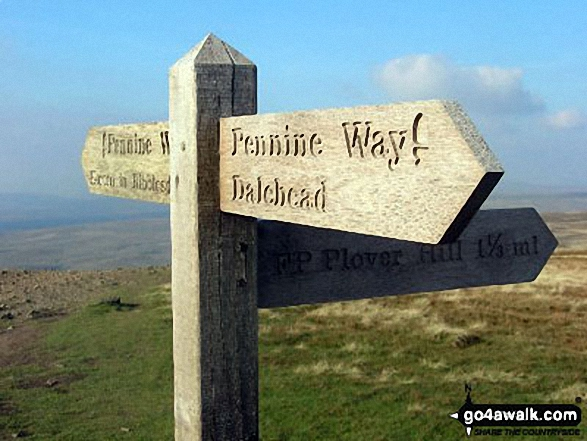 Walk ny112 Pen-y-ghent and Plover Hill from Dale Head - The Pennine Way sign on the summit of Pen-y-ghent