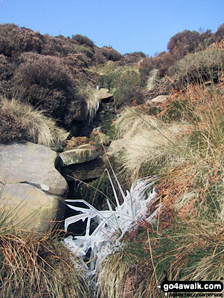 Climbing Fair Brook towards Fairbrook Naze (Kinder Scout). Walk route map d176 Fairbrook Naze (Kinder Scout) and Mill Hill from Birchin Clough photo