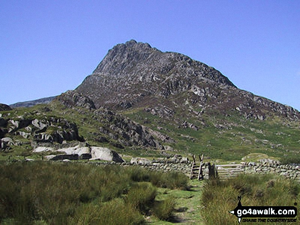 Tryfan from Glan Dena