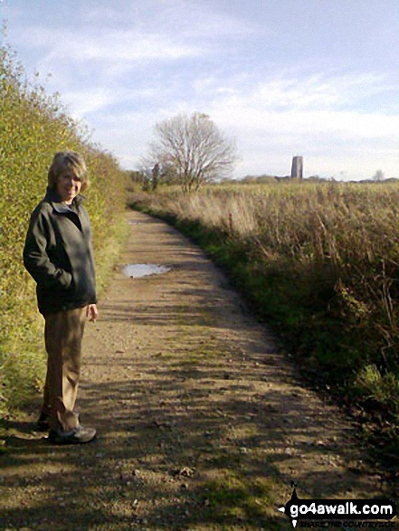 Low Road, East Somerton, lookng towards Winterton