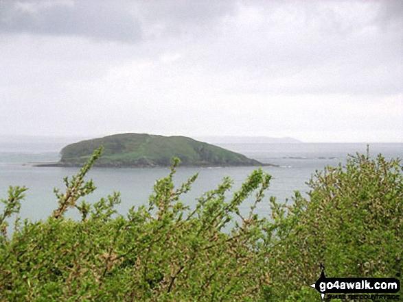 Walk co147 Talland Bay and Portlooe from West Looe - Looe Island