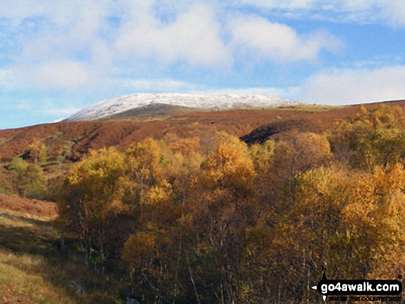 Ben Chonzie from Glen Lednock in all its autumn glory