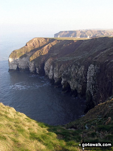 Thornwick Bay, Flamborough Head