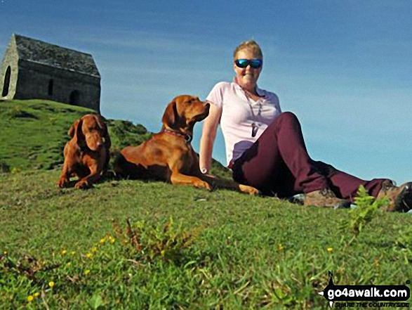Me and my faithful hounds at the top of Rame Head