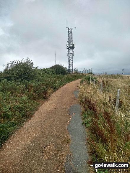 Radio Mast on Stenbury Down