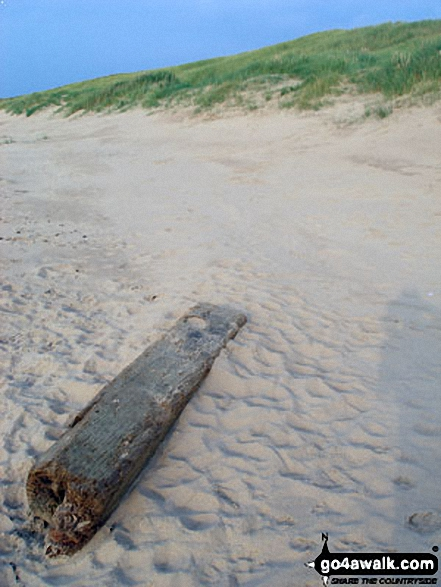 Driftwood on Ainsdale Sands. Walk route map me109 Ainsdale Nature Reserve and Coast from Ainsdale-on-Sea photo