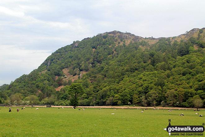 Walk c189 High Raise from Rosthwaite - King's How from near Rosthwaite, Borrowdale