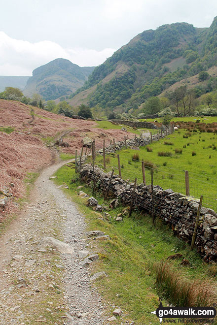 On the Cumbrian Way beside Stonethwaite Beck looking up Borrowdale to Alisongrass Crag and Eagle Crag