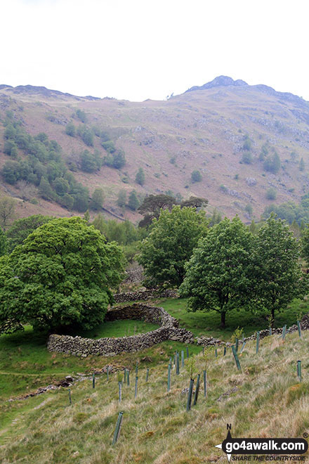Circular enclosure near Watendlath